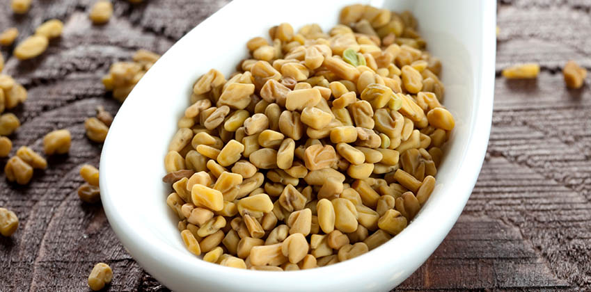 Fenugreek A Herb, Spice And Medicine